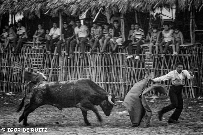 Feria de Temozòn
